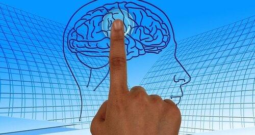 Сохраняем мозг