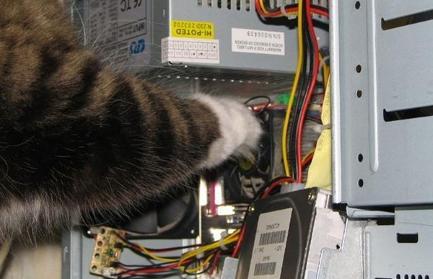 kak-ustanovit-i-nastroit-vps-server-dlya-torgovli-na-foreks-kak-zakachivat-faylyi-na-server