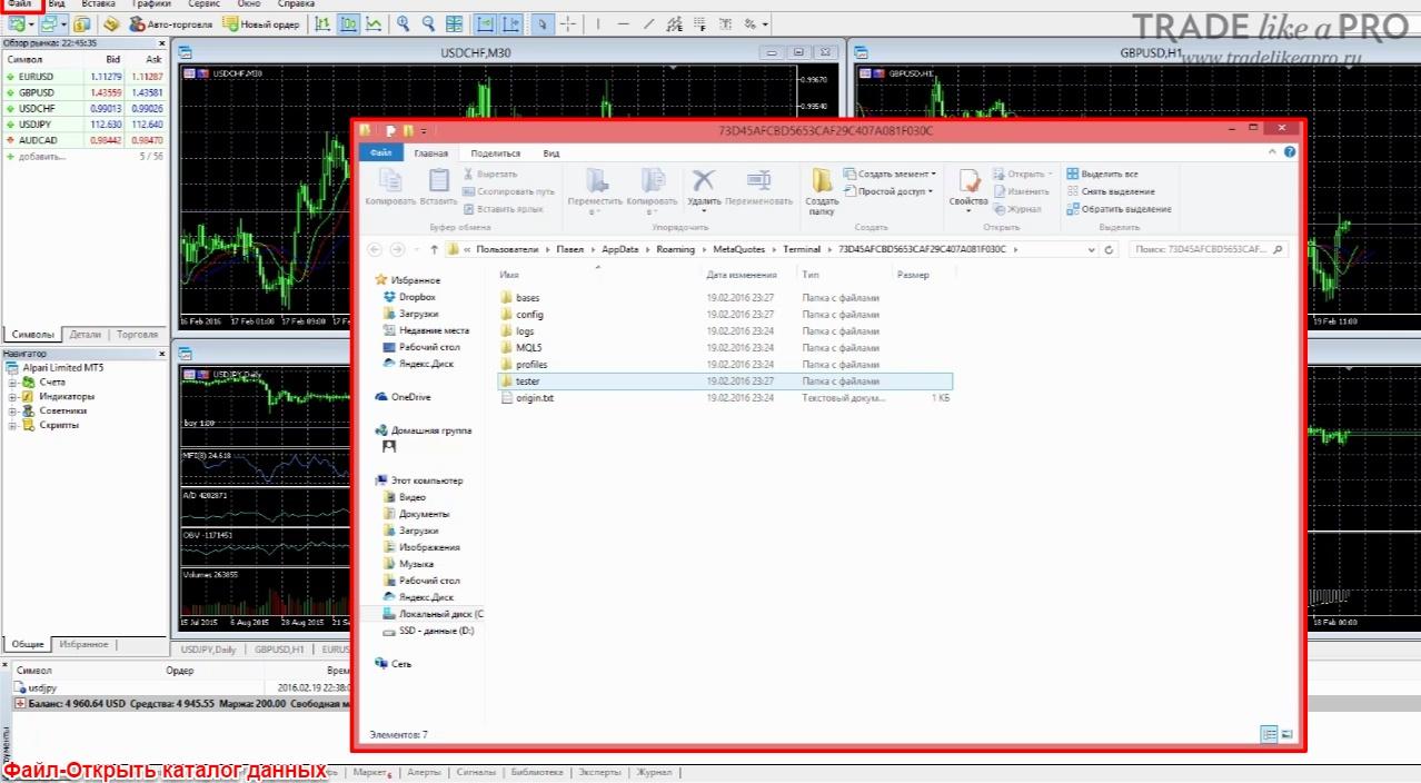 Меню-Файл-Каталог данных в Mt5