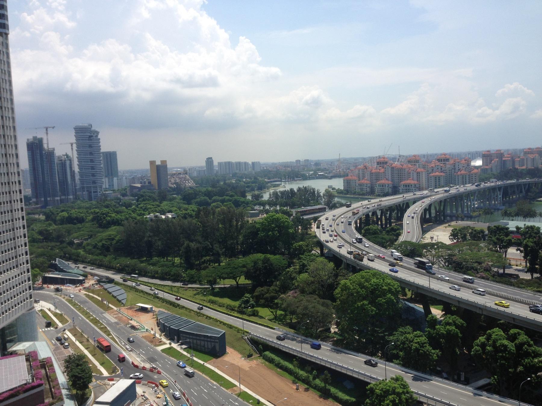 сингапур - сад