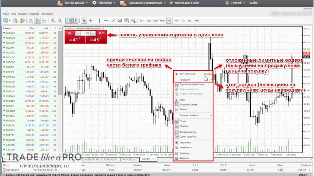 Секция (интерфейс графика) веб-версии MT 4